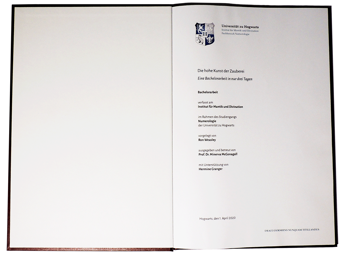 Hardcover - Titelseite